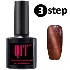 3 step UV MAGNETIC nail polish No. 102